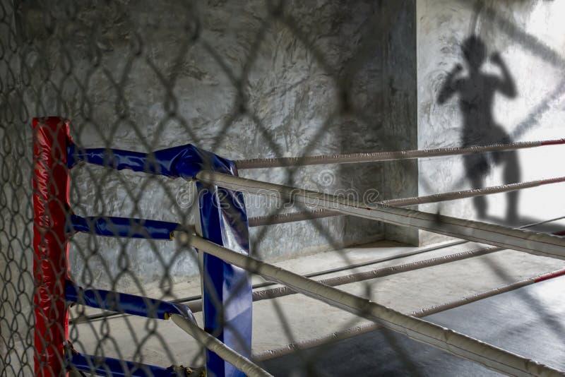 Тайский боксерский ринг пока тайский боксер приходит воевать тайское Muay может увидеть его тенью стоковое фото rf