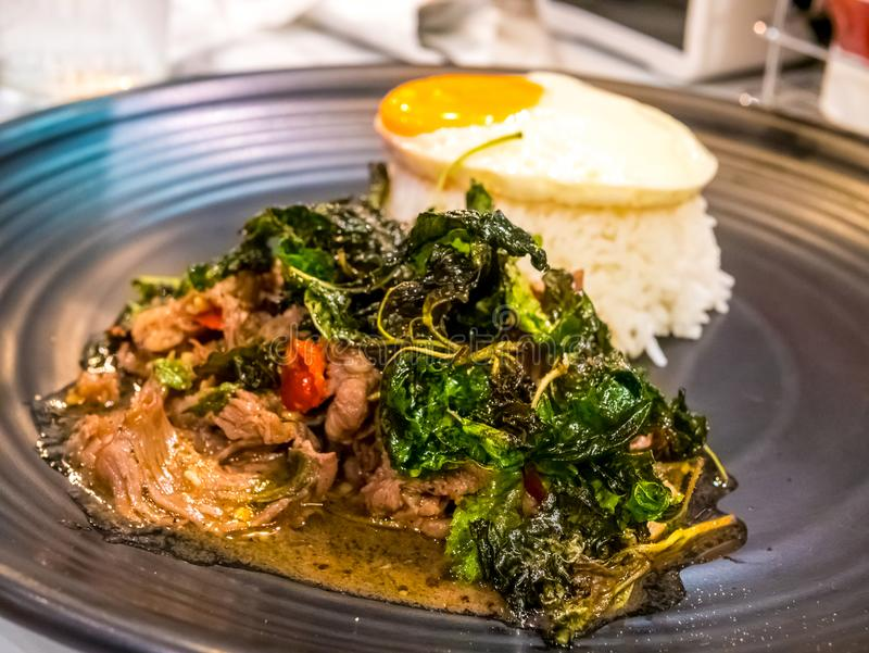 Тайский пряный популярный известный рецепт жареных рисов говядины базилика еды с увольнянным яичком Пусковая площадка Krapao Kai  стоковое фото rf