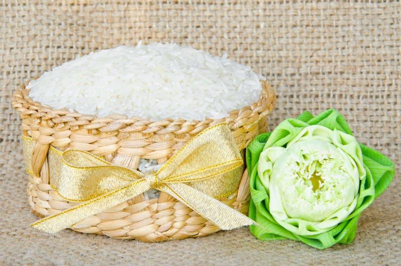 Тайский рис жасмина в weave корзины и цветке лотоса стоковые фотографии rf