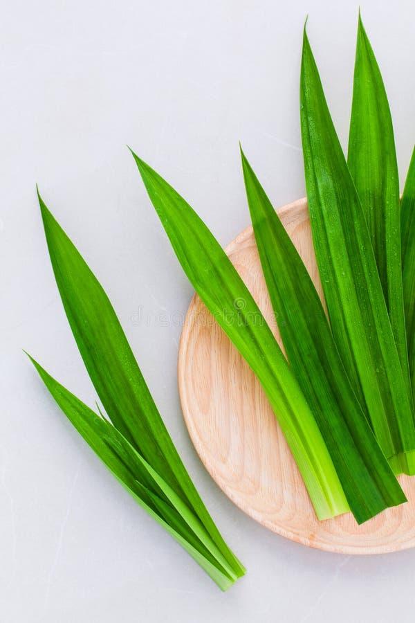 Тайский травяной ингридиент для тайского PA ароматерапии десерта и курортов стоковое фото rf