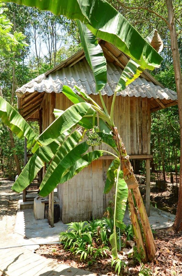 Тайское Дом-пребывание стиля стоковое фото