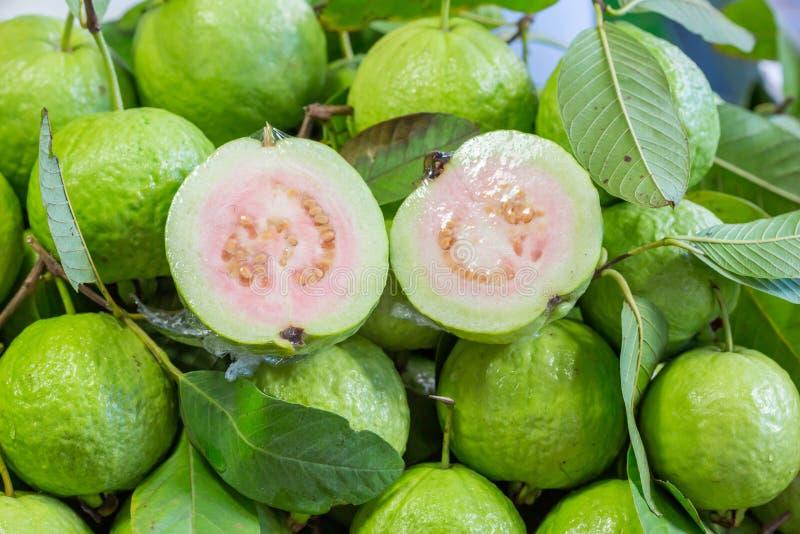 Тайский guava стоковые изображения rf