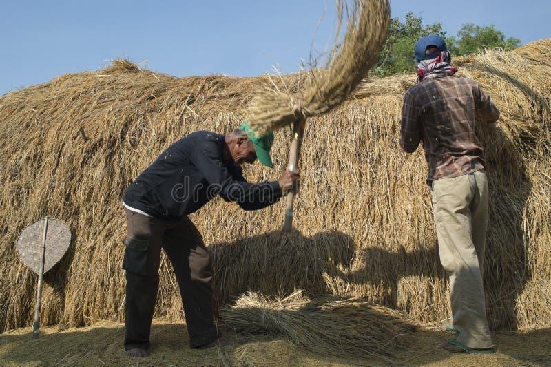 Тайское tresher риса стоковое изображение