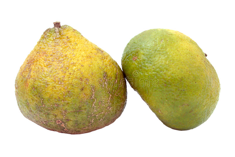 также вызванное uniq ugli плодоовощ стоковая фотография rf