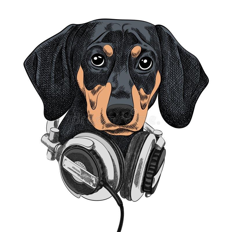 Такса породы собаки иллюстрации вектора в наушниках музыки иллюстрация вектора