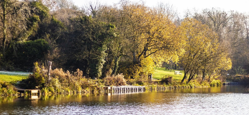 Такса Wootton озера юбилей королевская стоковое изображение rf