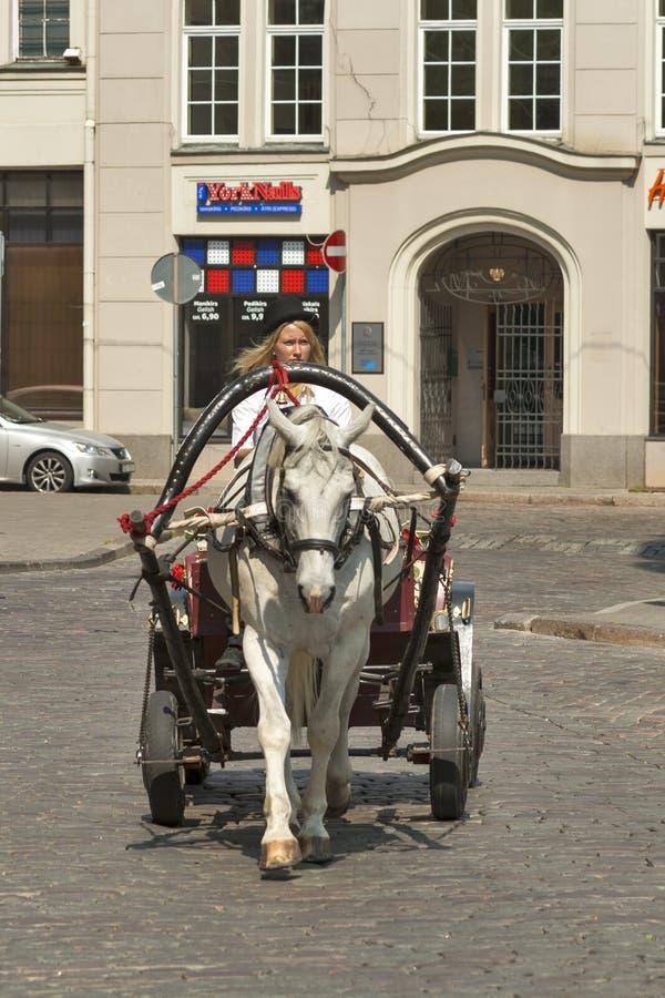 Таксист в Рига стоковая фотография rf