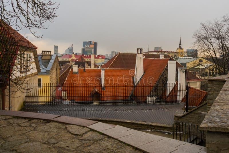 Таллин, Эстония: Воздушный панорамный красивый вид городского пейзажа старого городка в Таллине в осени Старые дома с красными кр стоковое изображение