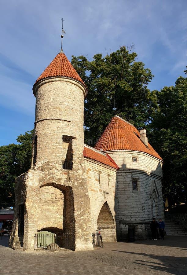 Таллин, Эстония - одна из средневековых башен ворот Viru в живописном старом городке стоковые изображения