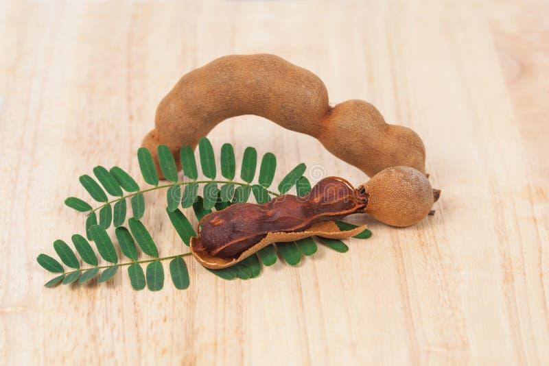 Тамаринд - сладостный зрелый тамаринд на древесине стоковые изображения