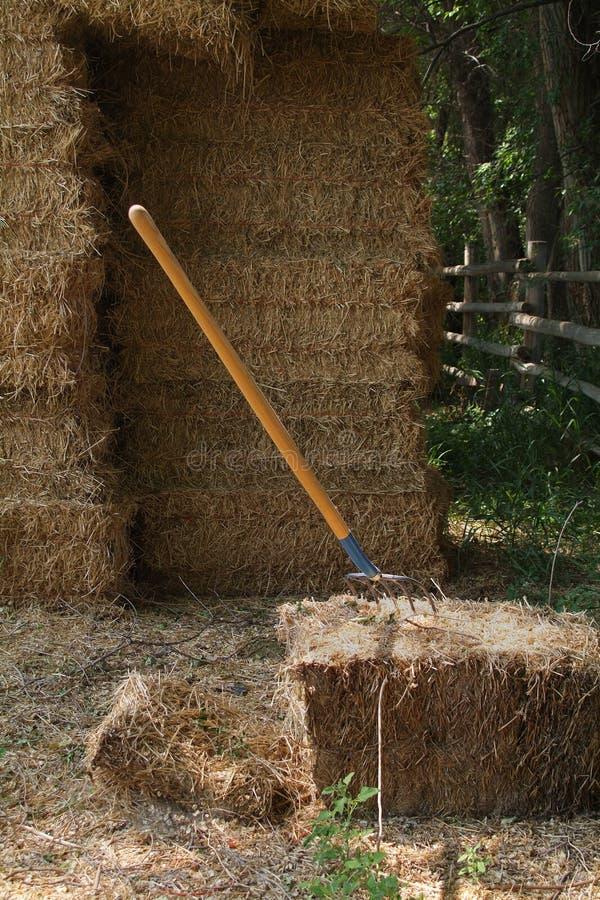 тангаж сена вилки порук стоковые изображения rf