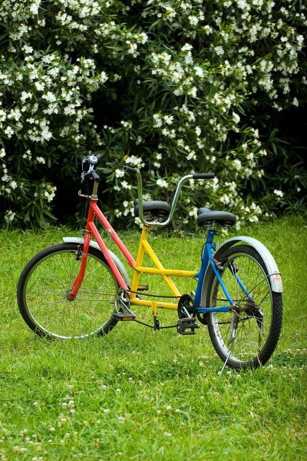 тандем bike стоковое изображение rf