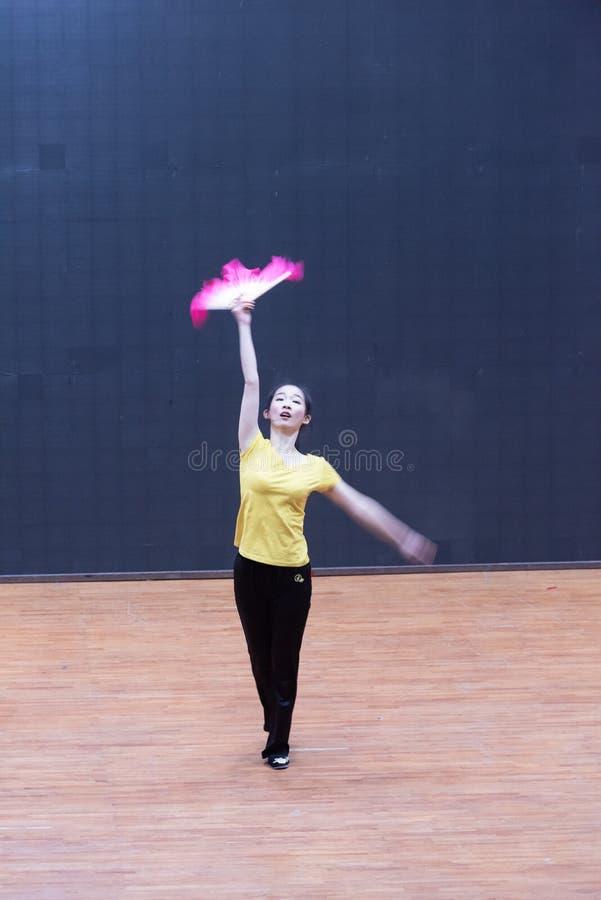 Танец рудоразборки танцора водя 2-Tea - уча репетиция на уровне отдела танца стоковые изображения rf