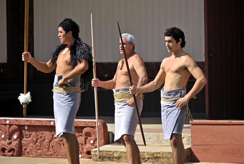 Танец Haka Полинезийца стоковые изображения