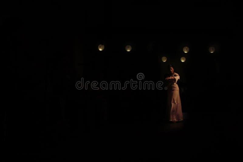 Танцор фламенко в темноте стоковое изображение rf