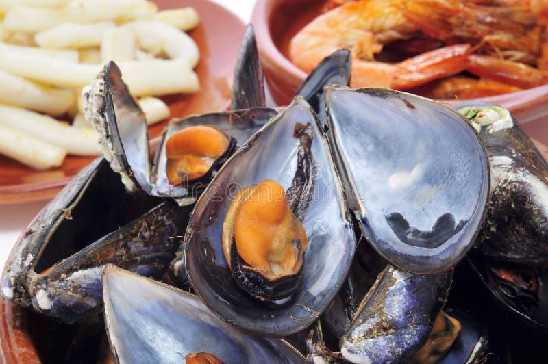 Тапы морепродуктов Spansih стоковое изображение