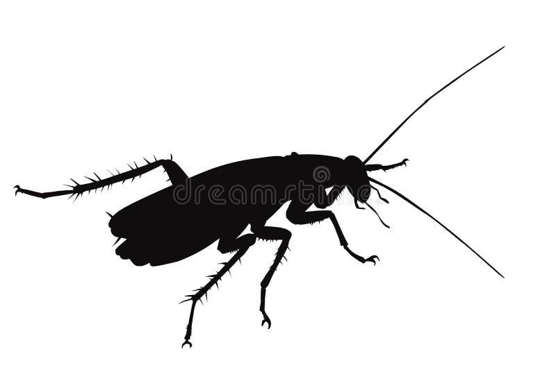 Таракан вектора бесплатная иллюстрация
