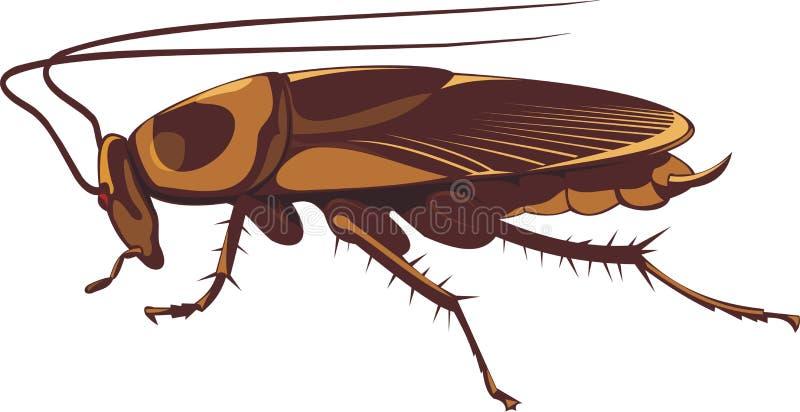 Таракан бесплатная иллюстрация
