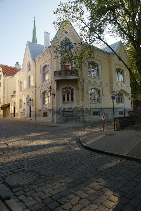 Таллин, ландшафт города стоковые изображения