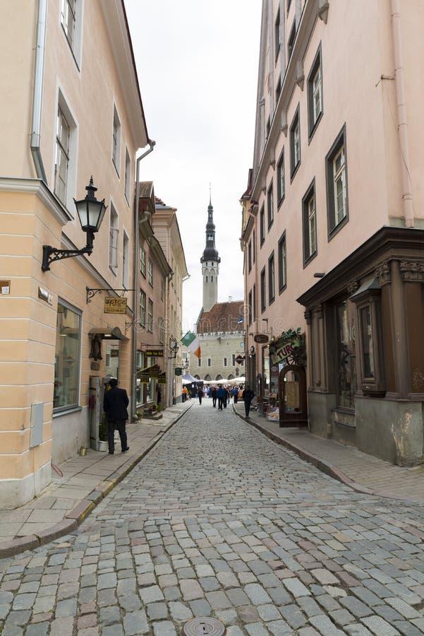 Таллин Эстония стоковые фотографии rf