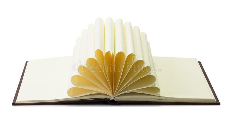 Творческая изолированная книга стоковое фото rf
