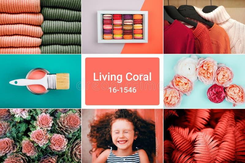 Творческий коллаж в живя цвете коралла стоковая фотография rf