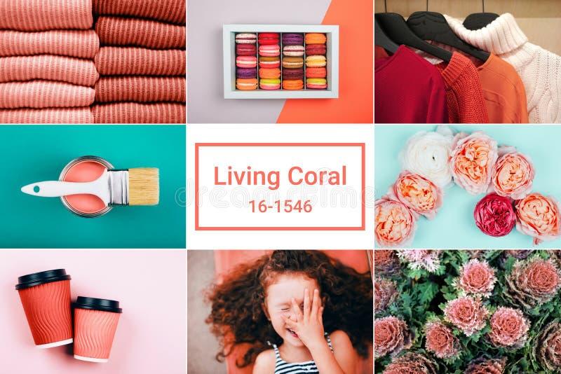 Творческий коллаж в живя цвете коралла стоковые изображения