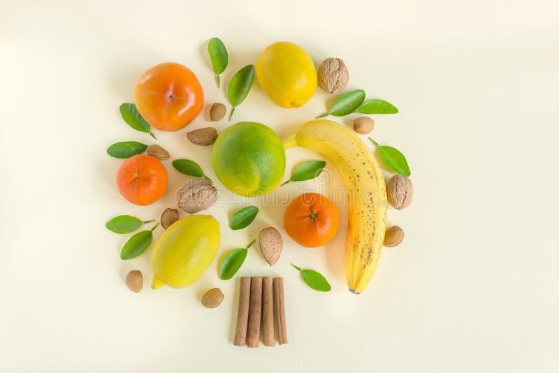 Творческий план дизайна плодов и гаек Дерево лимонов, апельсинов, хурм, банана, миндалин и зеленых листьев Концепция стоковое фото