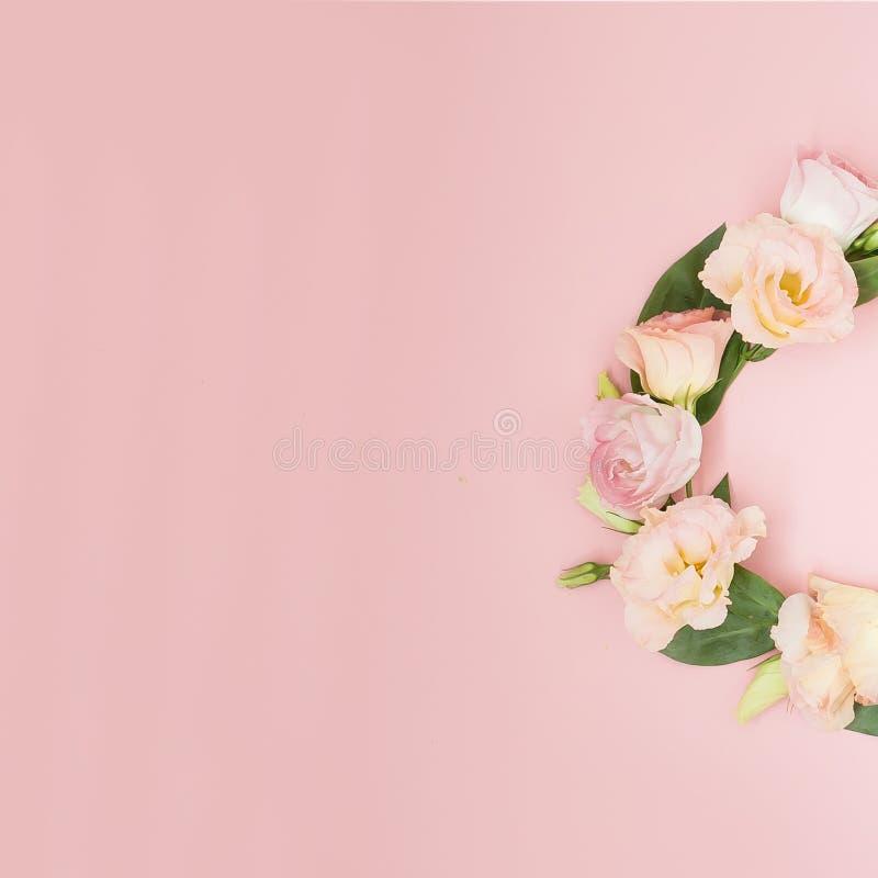 Творческий план сделанный с розовыми цветками на предпосылке пастельного пинка Плоское положение Взгляд сверху, рамка с космосом  стоковые изображения