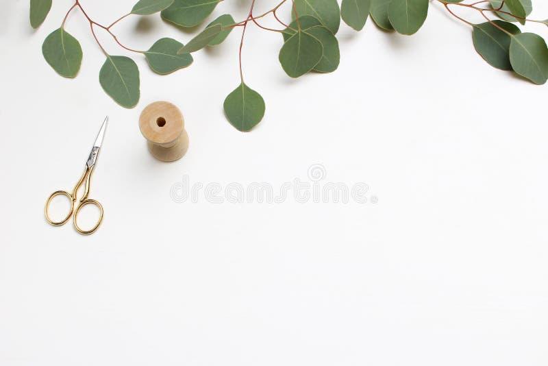 Творческий состав сделанный листьев и ветвей зеленого евкалипта серебряного доллара cinerea, золотые ножницы и деревянный стоковое фото