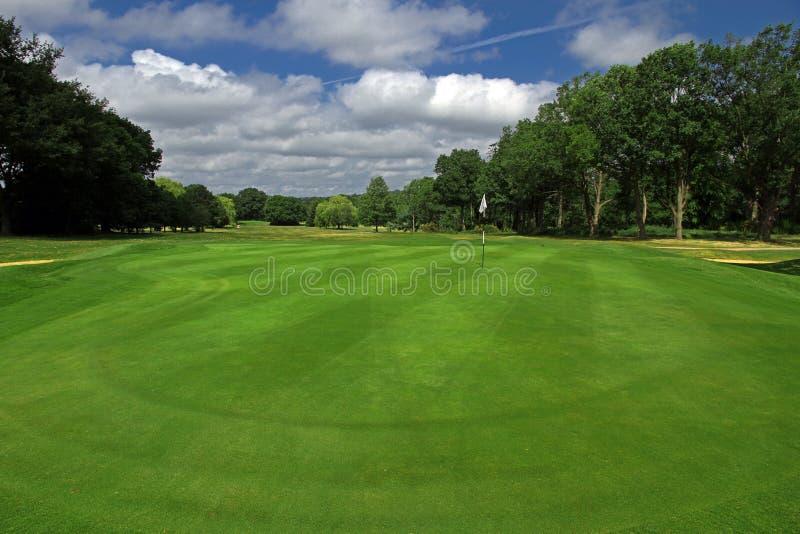 теките гольф стоковые изображения rf