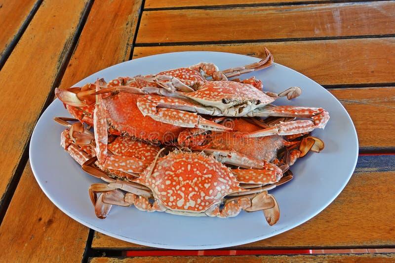 Теките краб цветка, морепродукты на взморье Таиланде стоковое фото rf