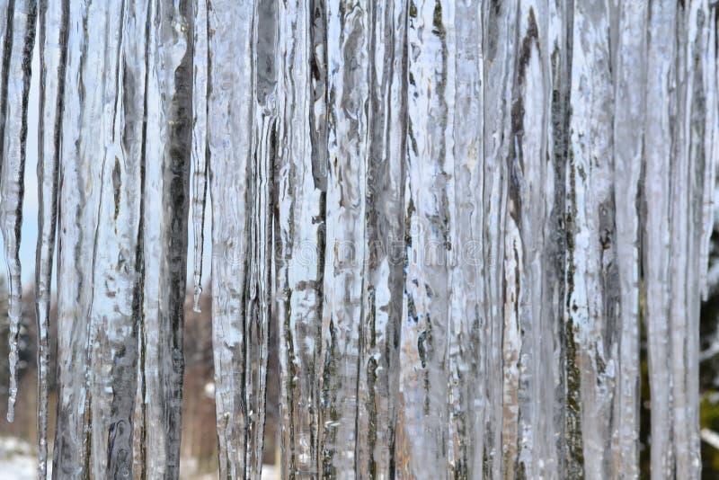 Текстура больших сосулек стоковое фото