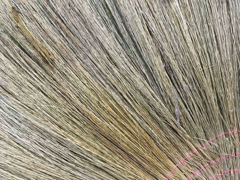 Текстура веника стоковая фотография rf