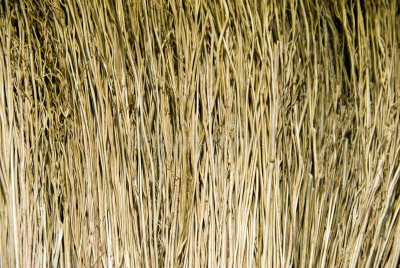 текстура веника стоковое фото rf