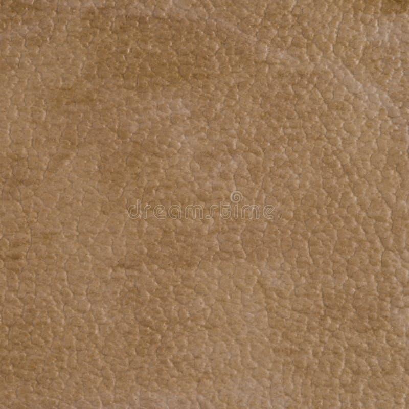 Download Текстура винила Брайна стоковое изображение. изображение насчитывающей сброс - 40578851