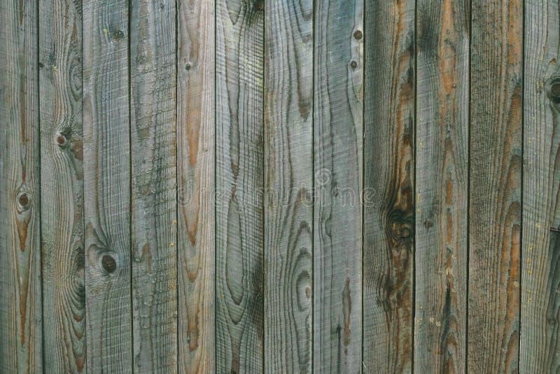 Текстура выдержанных серых зеленых деревянных доск Винтажная деревянная картина, поверхность Грязный затрапезный тимберс, дуб, со стоковые фото
