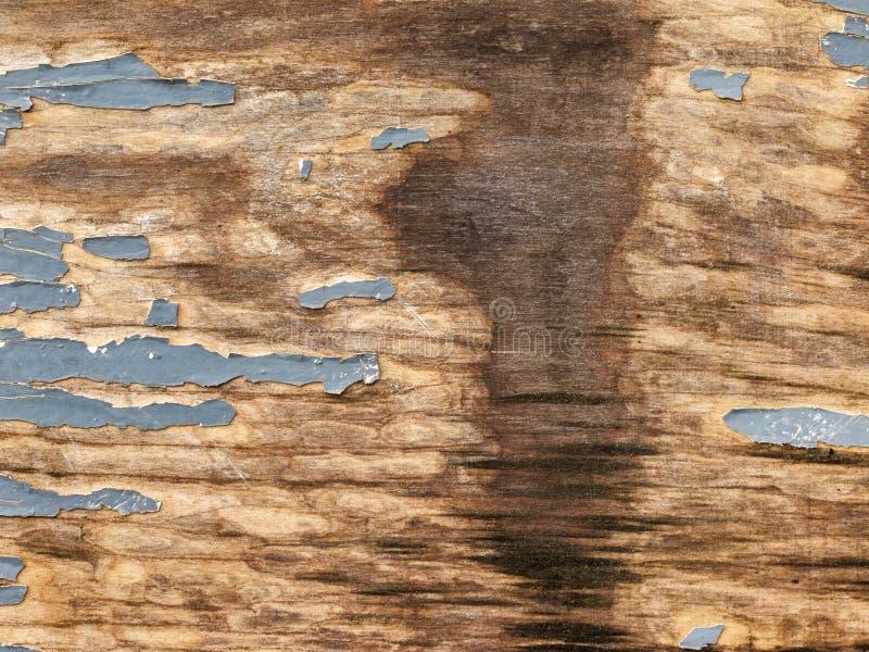 Текстура деревянной планки с треснутой серой краской, пятном утечки воды, абстрактной предпосылки стоковое фото rf