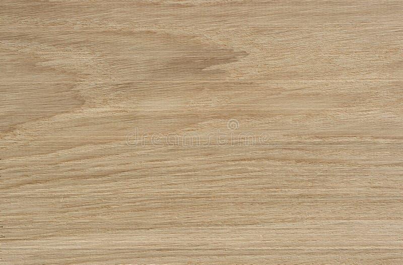 Текстура древесины дуба стоковые изображения rf