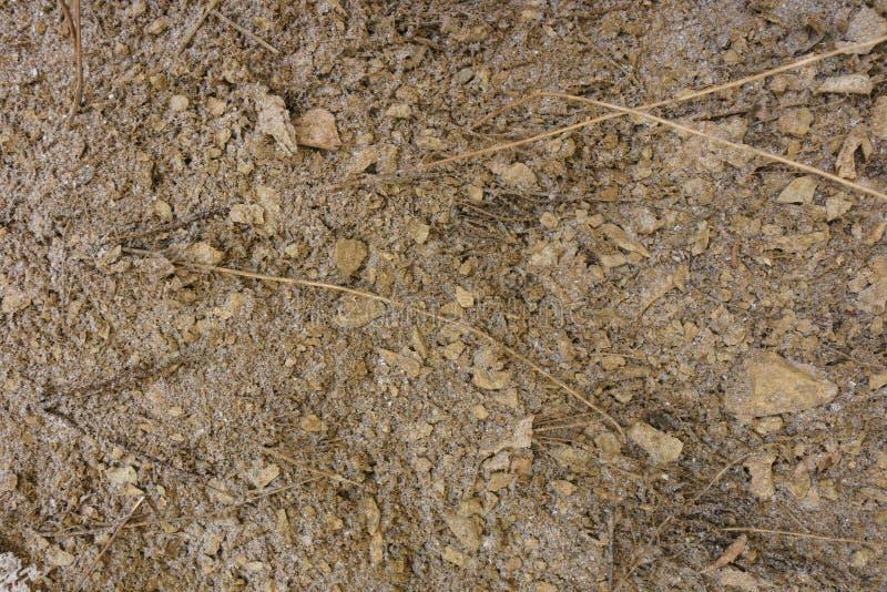 Текстура земли с небольшим количеством снега без заводов brougham конец вверх Взгляд сверху бесплатная иллюстрация