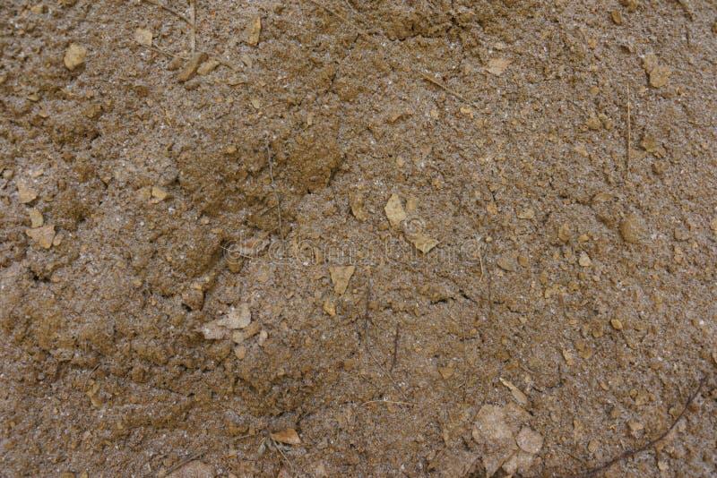 Текстура земли с небольшим количеством снега без заводов brougham конец вверх Взгляд сверху иллюстрация вектора