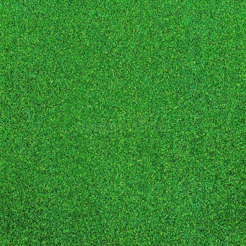 Текстура зеленой травы для предпосылки стоковые изображения