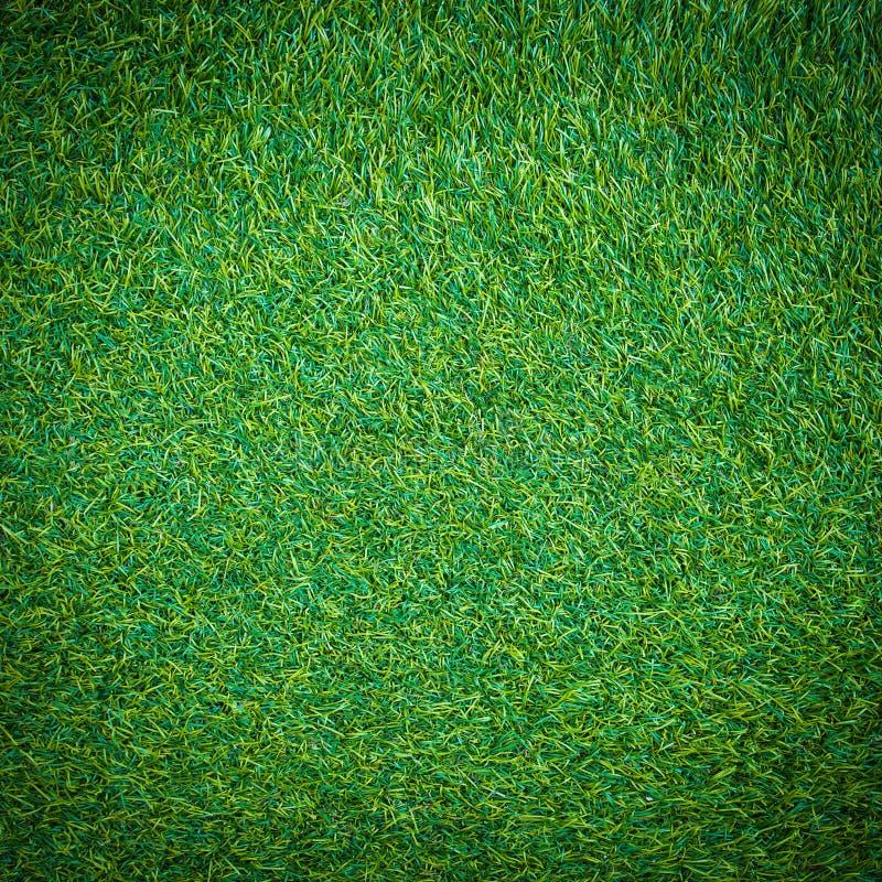 Текстура зеленой травы для предпосылки стоковое изображение