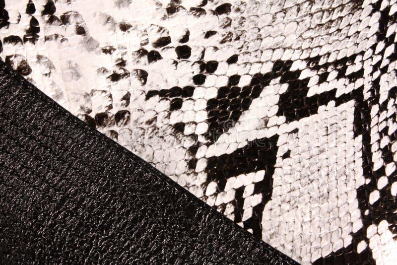 текстура змейки кожи стоковые изображения rf