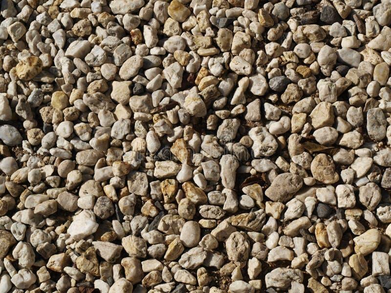 текстура камушков стоковые изображения rf
