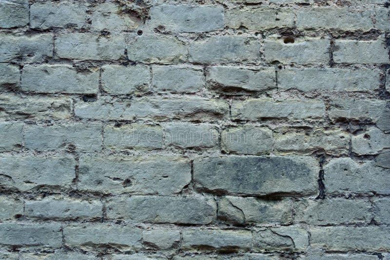 Текстура кирпичной стены старого grunge серая стоковое изображение rf