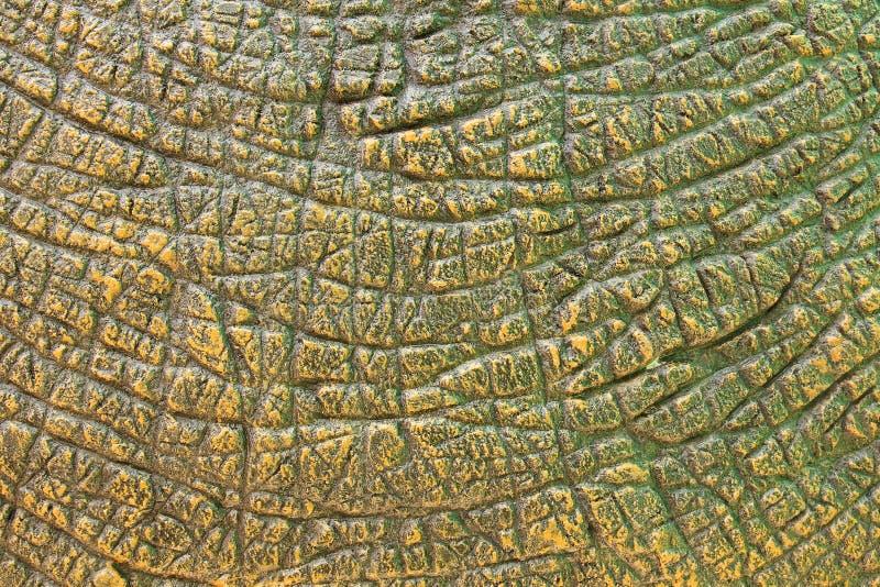 Текстура кожи динозавра стоковая фотография rf