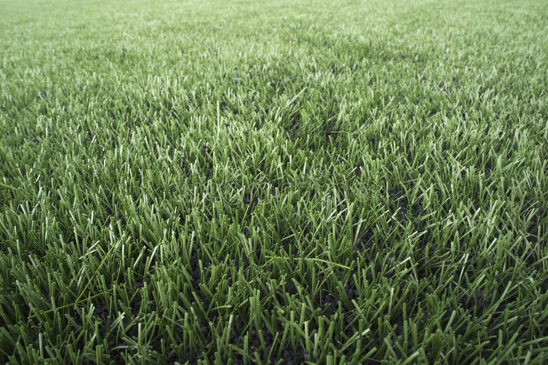 Текстура конспекта природы предпосылки двора зеленого цвета травы стоковые фотографии rf