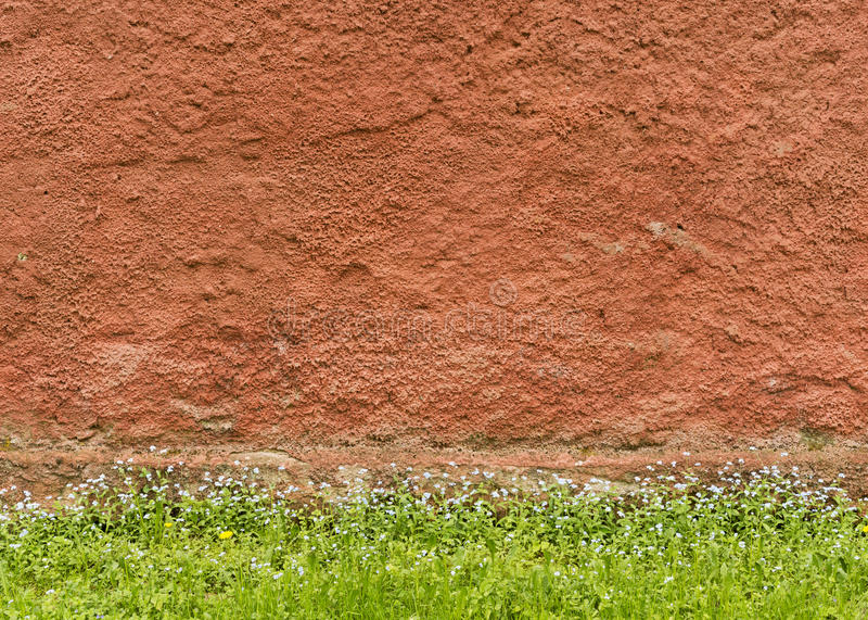 Текстура красной грубой заштукатуренной стены с травой и цветками стоковые фото