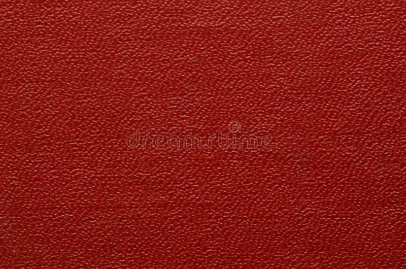 Текстура крупного плана кожи стоковые изображения